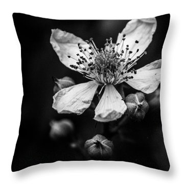 Solo In Ballet Throw Pillow