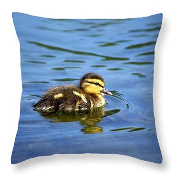 Solo Throw Pillow by Linda Mishler