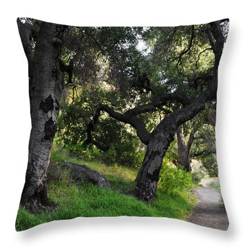 Solstice Canyon Live Oak Trail Throw Pillow by Kyle Hanson