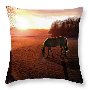 Solstice Sunrise Throw Pillow