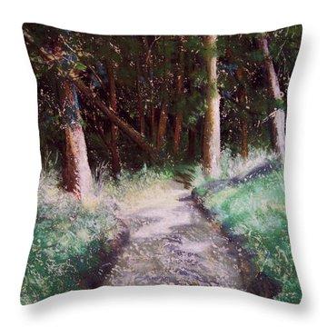 Solveigs Journey Throw Pillow by Marika Evanson