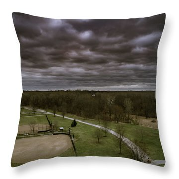 Somber Day Throw Pillow