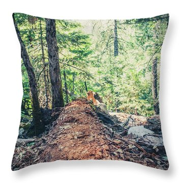 Somber Walk- Throw Pillow