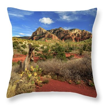 Some Cactus In Sedona Throw Pillow by James Eddy