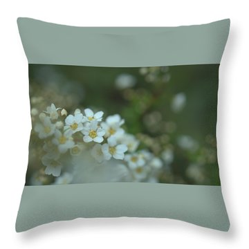 Some Gentle Feelings Throw Pillow by Rachel Mirror