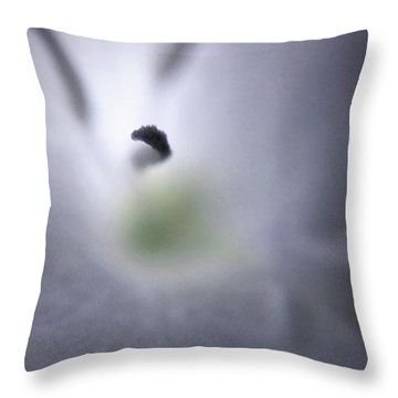 Some Landscapes Are Bigger Than Others Throw Pillow