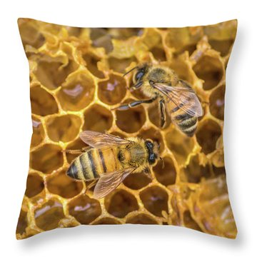 Throw Pillow featuring the photograph Some Of Your Beeswax by Bill Pevlor