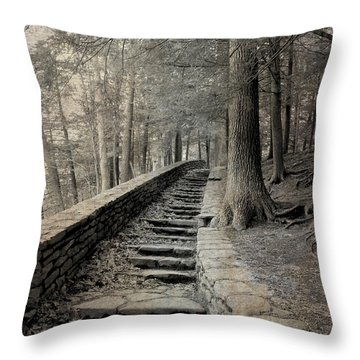 Some Other Now, Some Other When 3 Throw Pillow