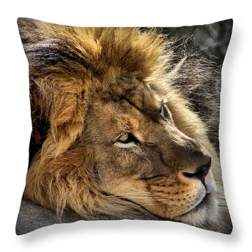 Someday Freedom Throw Pillow by Linda Mishler