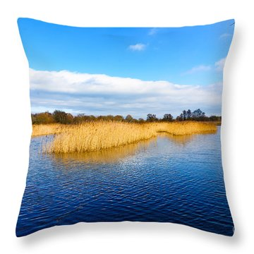Somerset Levels Throw Pillow