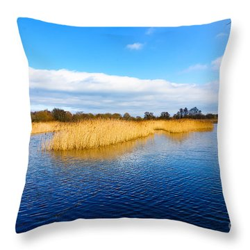 Throw Pillow featuring the photograph Somerset Levels by Colin Rayner