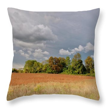 Throw Pillow featuring the photograph Somerset Sky 3069 by Guy Whiteley