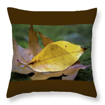Throw Pillow featuring the photograph Something Fishy by Dale Kincaid