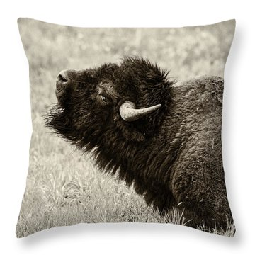 Something In The Air Throw Pillow