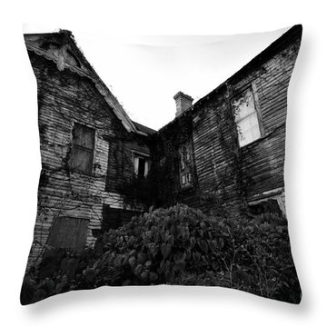 Something In The Window Throw Pillow by David Lee Thompson