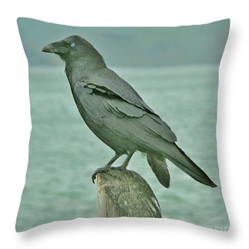 Something To Crow About Throw Pillow