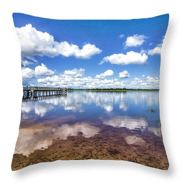 Something To Reflect On Throw Pillow