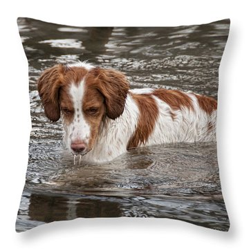 Something Under The Water Throw Pillow
