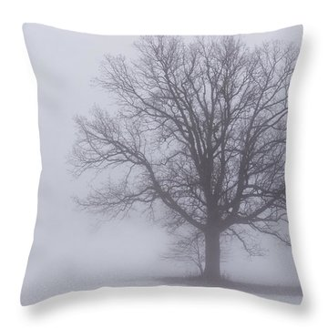 Sometime We Need The Fog Throw Pillow