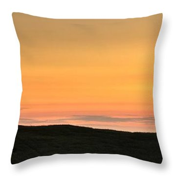 Sometimes The Unexpected Hits You Throw Pillow