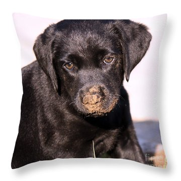 Sometimes You Get Dirty Throw Pillow