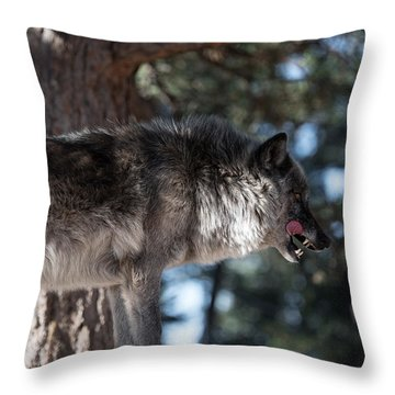 Sometimes You Have To Kill Throw Pillow