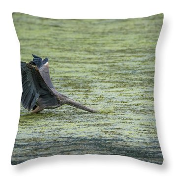 Sometimes You Just Go Head First... Throw Pillow