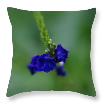 Somewhere In This Dream Throw Pillow by Linda Shafer