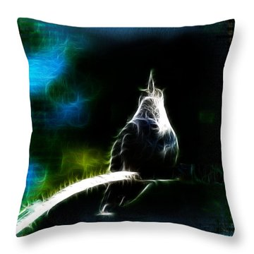 Throw Pillow featuring the photograph Somewhere Over The Rainbow by EricaMaxine  Price
