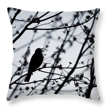 Throw Pillow featuring the photograph Song Bird Silhouette by Terry DeLuco
