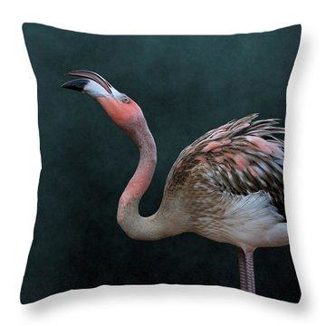 Song Of The Flamingo Throw Pillow