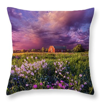 Songs Of Days Gone By Throw Pillow by Phil Koch