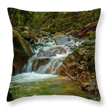 Throw Pillow featuring the photograph Sonoma Valley Creek by Bill Gallagher