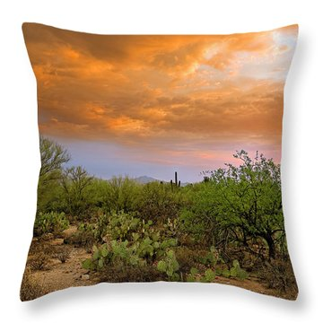 Throw Pillow featuring the photograph Sonoran Desert H11 by Mark Myhaver