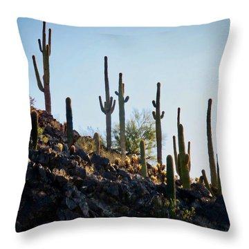 Sonoran Desert Saguaro Slope Throw Pillow
