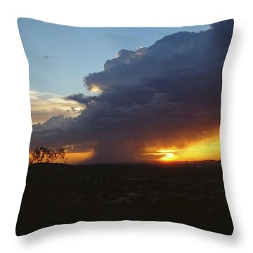 Sonoran Desert Thunderstorm Throw Pillow