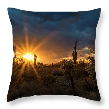 Throw Pillow featuring the photograph Sonoran Gold At Sunset  by Saija Lehtonen