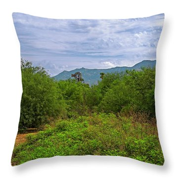 Throw Pillow featuring the photograph Sonoran Greenery H30 by Mark Myhaver