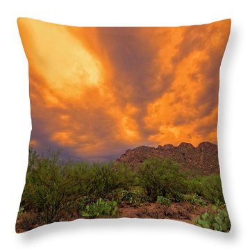 Throw Pillow featuring the photograph Sonoran Sonata H16 by Mark Myhaver