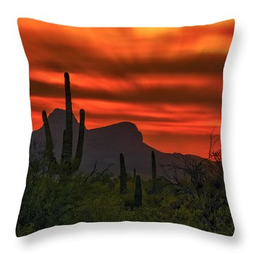 Sonoran Sunset H38 Throw Pillow