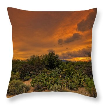 Throw Pillow featuring the photograph Sonoran Sunset H4 by Mark Myhaver
