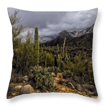 Sonoran Winter No.3 Throw Pillow