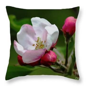 Soon To Be Apples Throw Pillow by Erica Hanel
