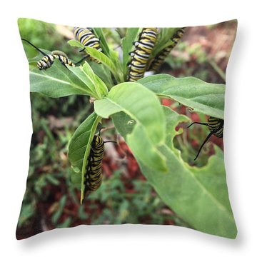 Soon To Change Throw Pillow