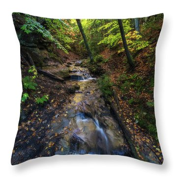 Throw Pillow featuring the photograph Soothing Cascade by Heather Kenward