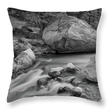 Soothing Colorado Monochrome Wilderness Throw Pillow by James BO Insogna