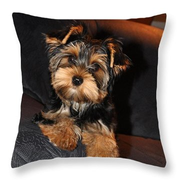Sophie Throw Pillow by Adriana Holmes