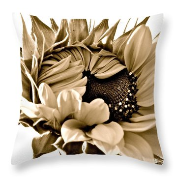 Sophisticated Throw Pillow by Gwyn Newcombe