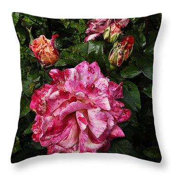 Sorbet Throw Pillow by Karo Evans