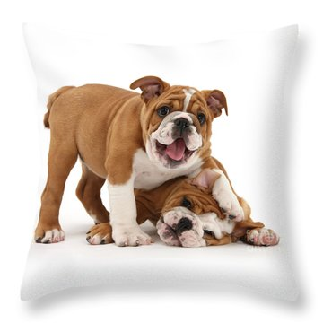 Sorry, Didn't See You There Throw Pillow